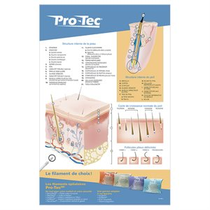 Poster | Pro-Tec Guide | Large