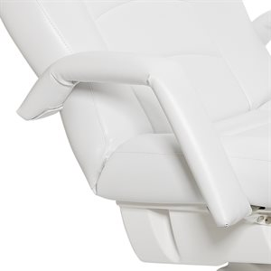Removable Armrests | Capella and Auriga